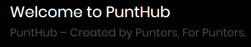 punthub review