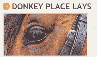 donkey-place-lays-review