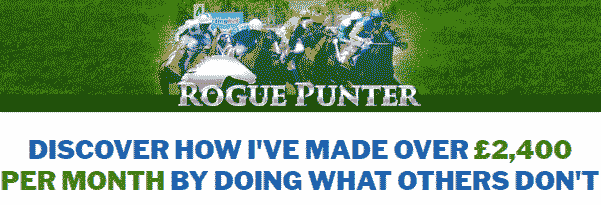 rogue-punter-review